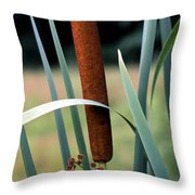 Single Cattail Throw Pillow