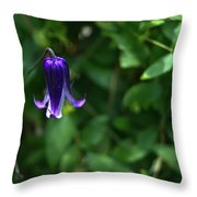 Single Clematis Bell Blossom Throw Pillow