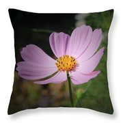 Single Cosmos Throw Pillow