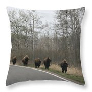 Single File Now Throw Pillow