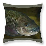 Single Fish Swimming Throw Pillow