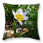 Single Flower - Simplify Series Throw Pillow