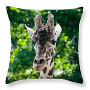 Single Giraffe Throw Pillow