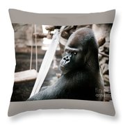 Single Gorilla Sitting Alone Throw Pillow