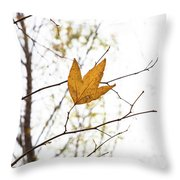 Single Leaf In Fall Throw Pillow