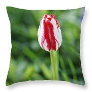 Single Lovely Tulip Throw Pillow