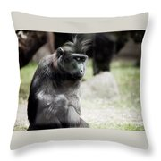 Single Macaque Monkey Sitting Throw Pillow