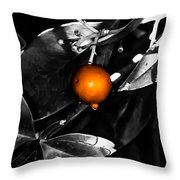 Single Orange Berry Throw Pillow