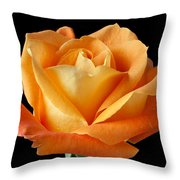 Single Orange Rose Throw Pillow