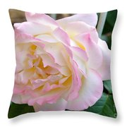 Single Peace Rose Throw Pillow