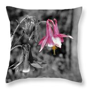 Single Pink Columbine Throw Pillow