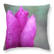 Single Pink Magnolia Throw Pillow