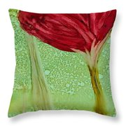 Single Poppy Throw Pillow