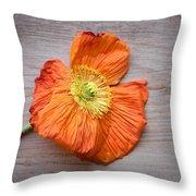 Single Poppy On Wood Throw Pillow