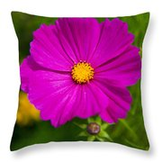 Single Purple Cosmos Flower Throw Pillow