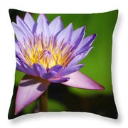Single Purple Water Lily Number One Throw Pillow