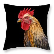 Single Rooster Throw Pillow