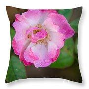 Single Rose 2 Throw Pillow