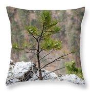 Single Snowy Pine Throw Pillow