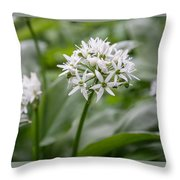 Single Stem Of Wild Garlic Throw Pillow
