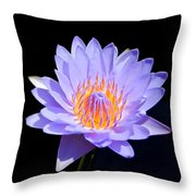Single Water Lily Throw Pillow