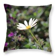 Single White Daisy On Purple Throw Pillow