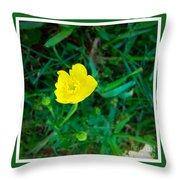 Single Yellow Buttercup Throw Pillow