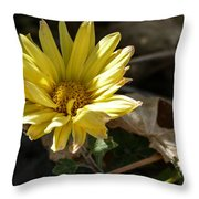 Single Yellow Mum Throw Pillow