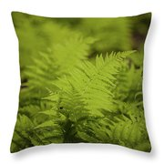 Singular Throw Pillow