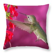 Sipping At The Salvia Throw Pillow