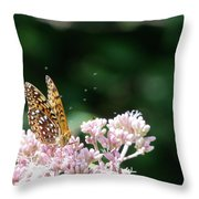 Sipping Nectar Throw Pillow