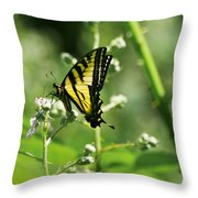 Sipping On Blackberry Blossoms Throw Pillow