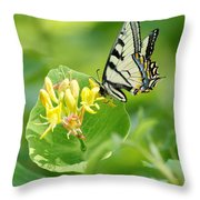 Sipping Swallowtail Throw Pillow