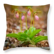 Sisters-2 Throw Pillow