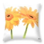 Sisters    4242 Throw Pillow