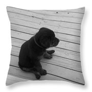 Sit And Think Throw Pillow