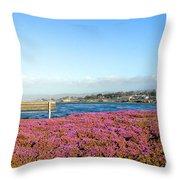 Sit Awhile Throw Pillow