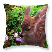 Sitka Black-tailed Fawn Throw Pillow