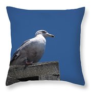 Sitting By The Dock Of The Bay Throw Pillow