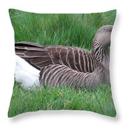 Sitting Goose Throw Pillow