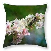 Sitting Guard In The Cherry Blossoms Throw Pillow