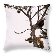 Sitting High Up Throw Pillow