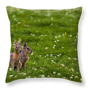 Sitting In Clover Throw Pillow