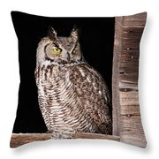 Sitting In The Window Throw Pillow