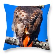 Sitting Throw Pillow