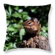 Sitting On A Post Throw Pillow