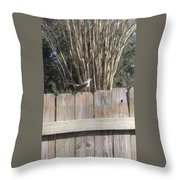 Sitting On A Fence  Throw Pillow