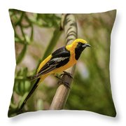 Sitting On The Agave Throw Pillow