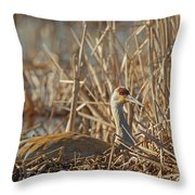 Sitting On The Nest Throw Pillow
