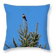 Sitting On Top Of The World 2 Throw Pillow